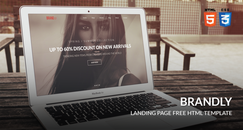 Brandly Free HTML Website Template